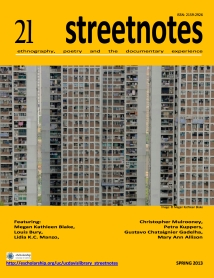Steetnotes 21 cover